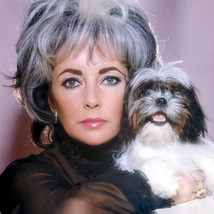 elizabeth taylor with matching dog